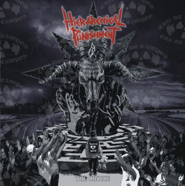 Hierarchical Punishment - The Choice